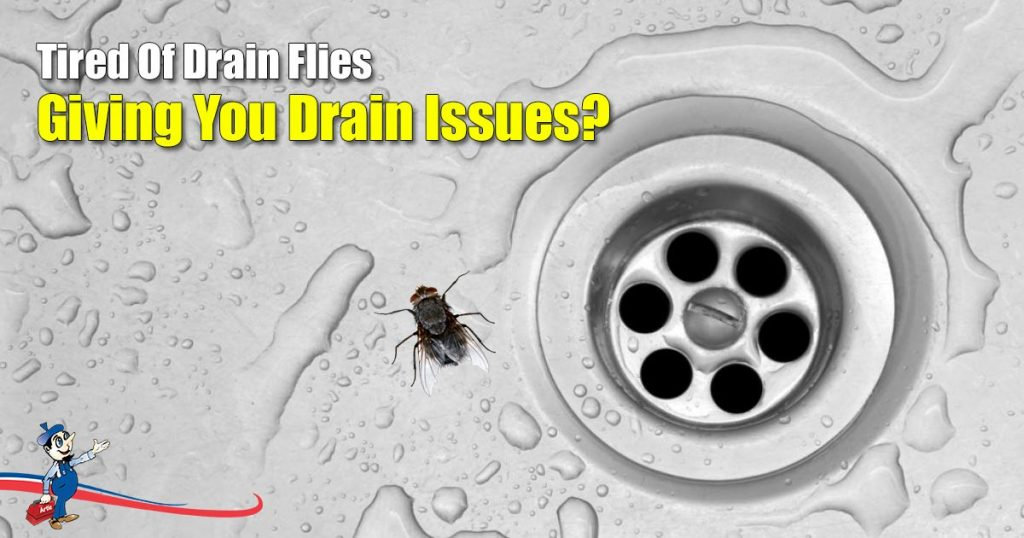 Tired Of Drain Flies Giving You Drain Issues?