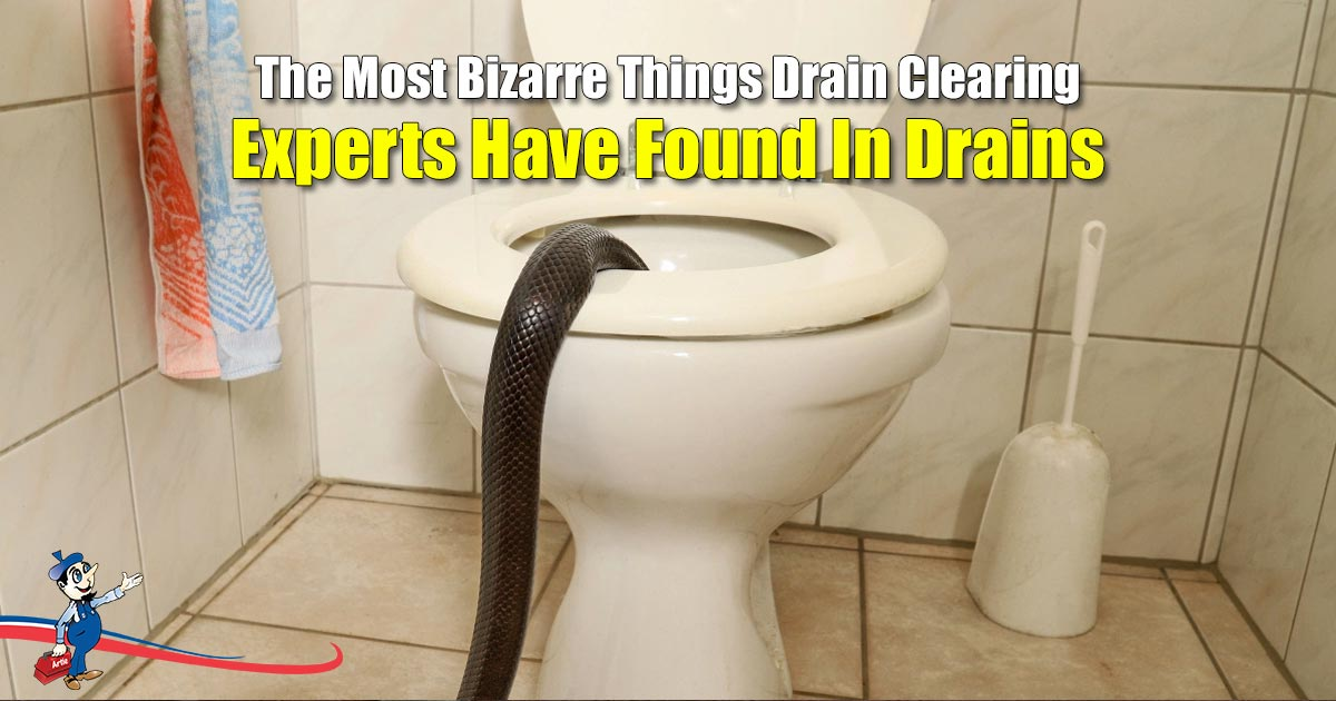 Drain Clearing Experts