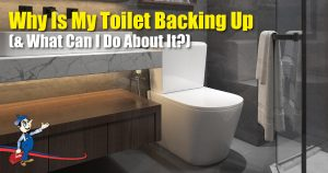 toilet backing up
